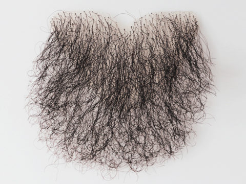 pict_pubic-hair-patch-a